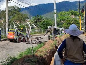 Oreja-palenque-(07)-idesan-2021