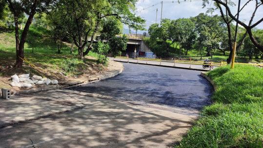 Oreja-palenque-(12)-idesan-2021